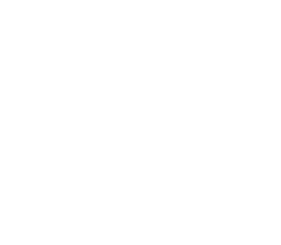 The Wedding Shooters